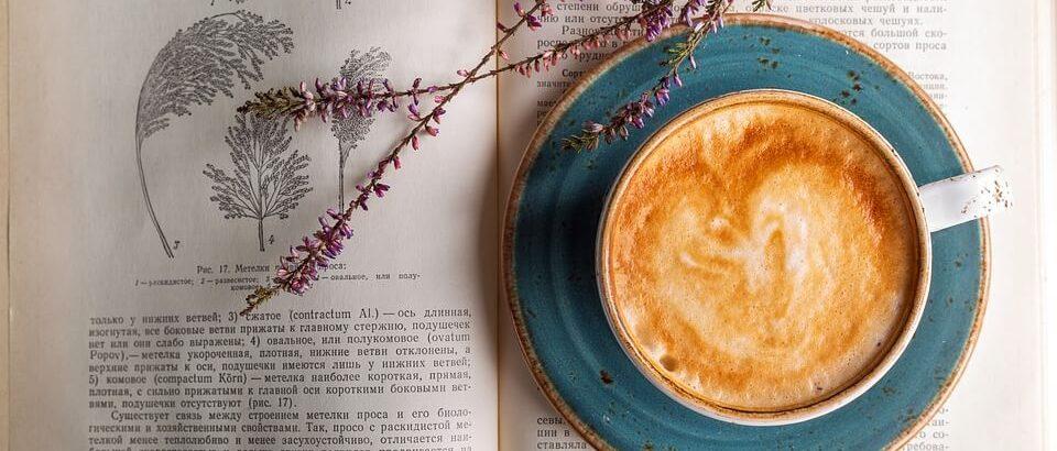 Las cafeterías más originales de Barcelona – ¡PARA TODOS LOS GUSTOS!