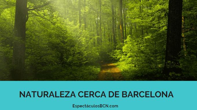 Disfruta de la naturaleza en Barcelona y alrededores