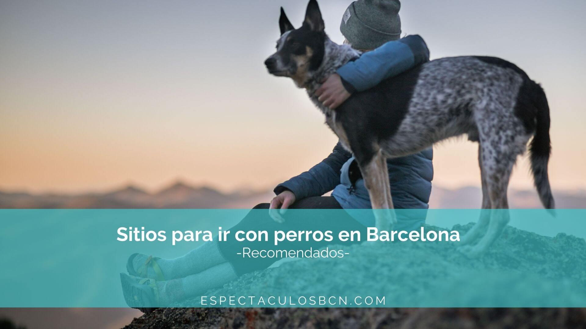 barcelona con perros